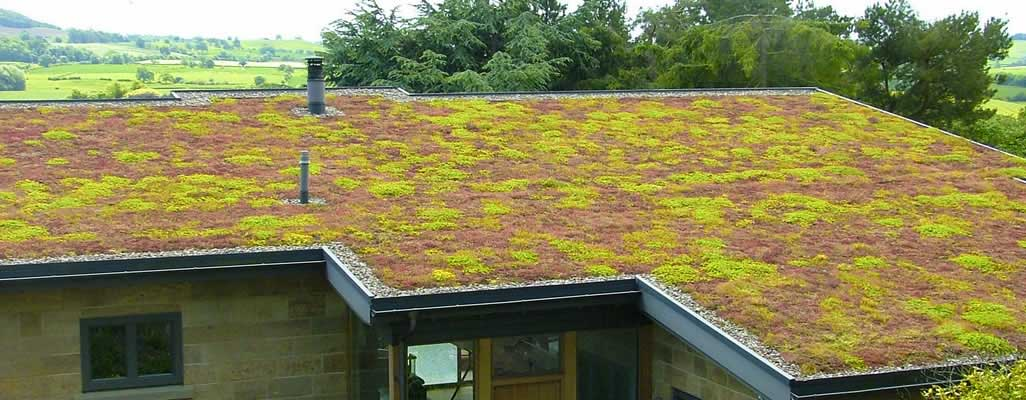 Green-Roof-Installers-Skipton-North-Yorkshire-02