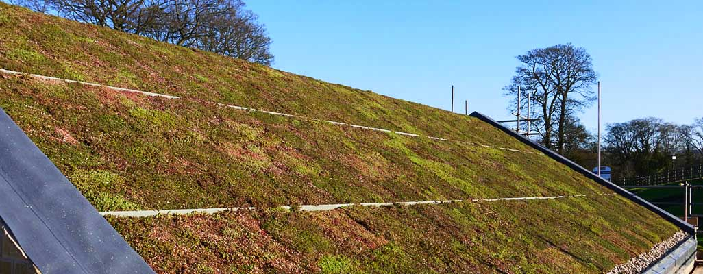Green-Roof-Installers-Skipton-North-Yorkshire-08