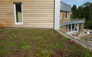 Green Roofs Naturally BIW1