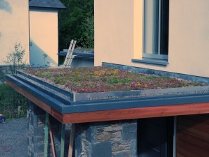 Windermere porch roof Green Roofs Naturally