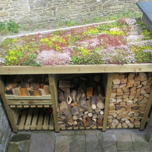 DIY Sedum Log Store Roof