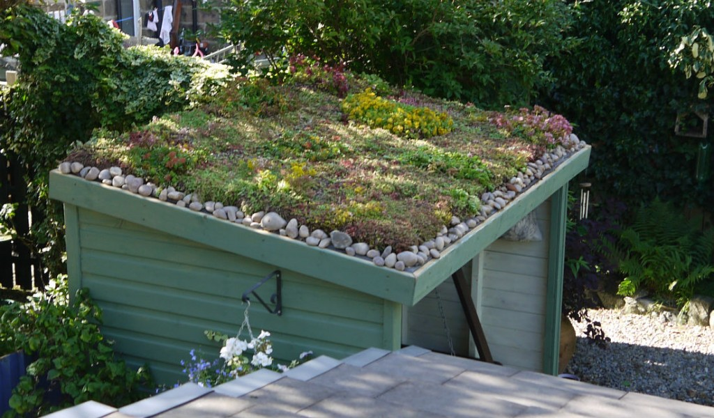 An Arbour Not A Shed Green Roofs Naturally Otley