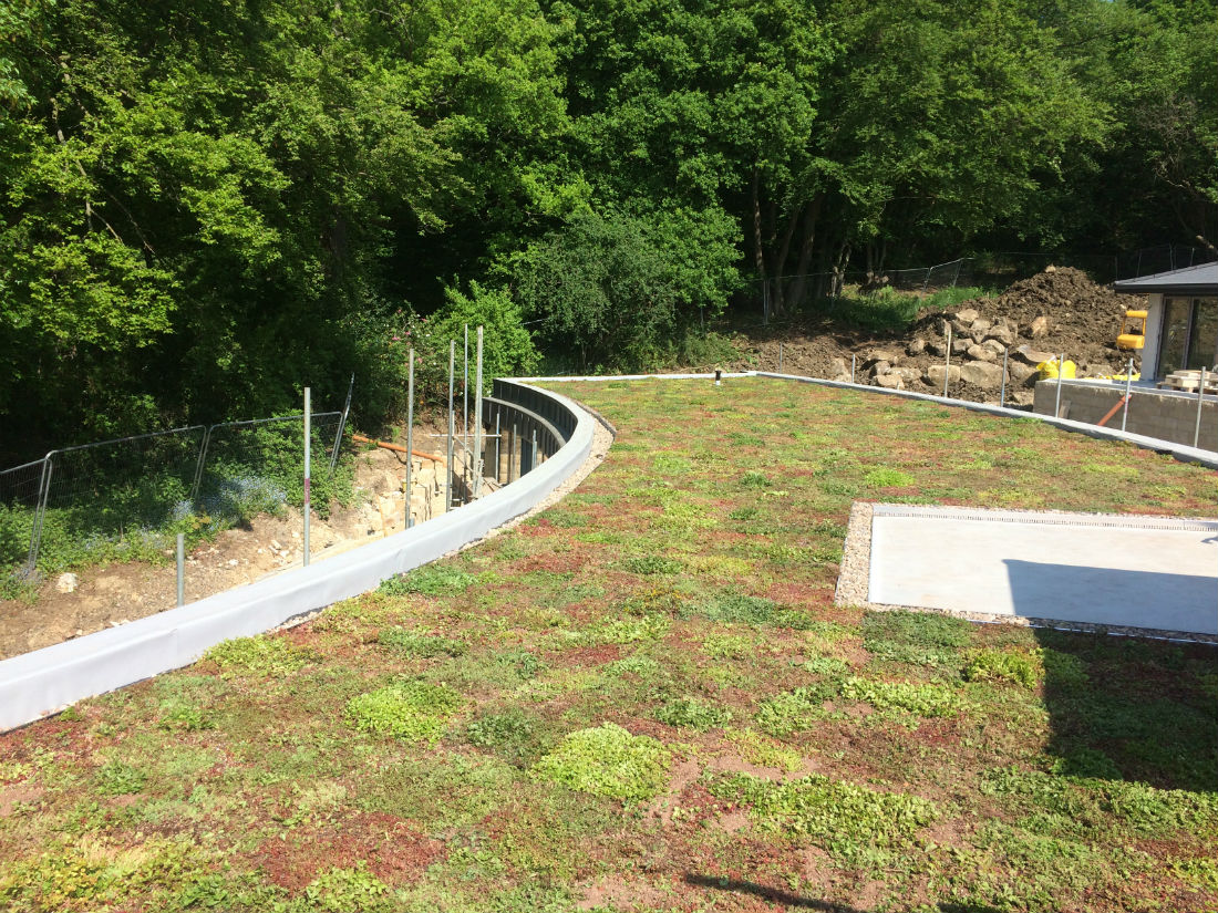 A Beautiful Curve For Our Sedum Green Roofs Naturally